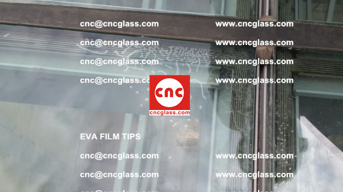 Choose Right Glass Sealant for EVA Film Laminated Glass (2)