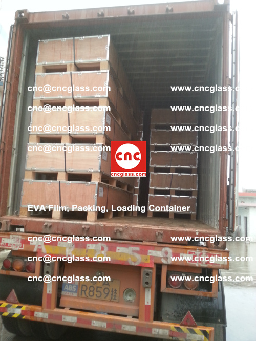 EVA Film, Package, Loading Container, Laminated Glass, Safety Glazing (41)